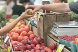 Farmers Market produce - apples